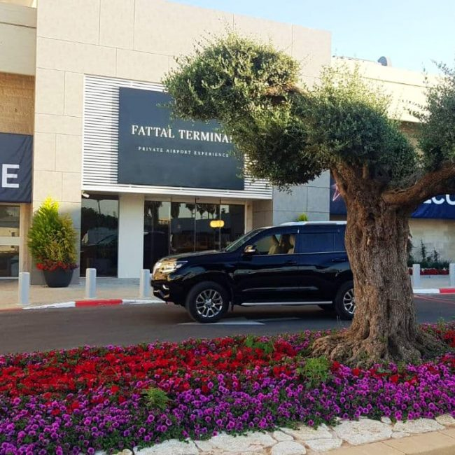 VIP taxi in Ben Gurion