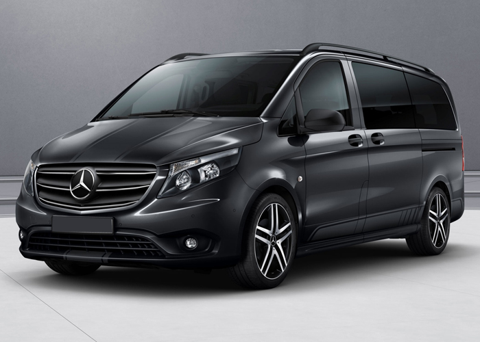 mercedes-vito-with-driver-israel