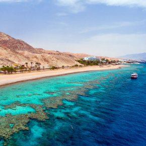 חוף-האלמוגים