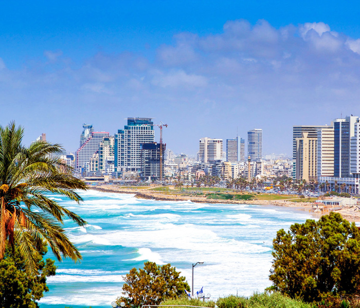 car-rental-with-driver-tel-aviv