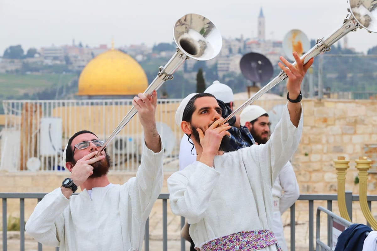 minibus-for-tour-to-jerusalem-for-passover-2021