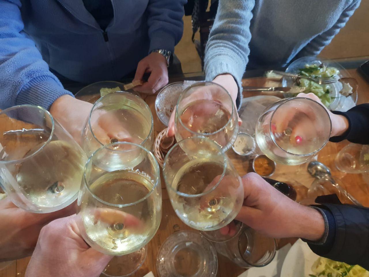 Israel wine tours